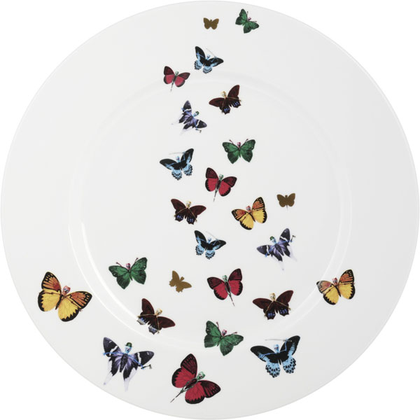 Maximus Platter from the Lepidoptera by New English