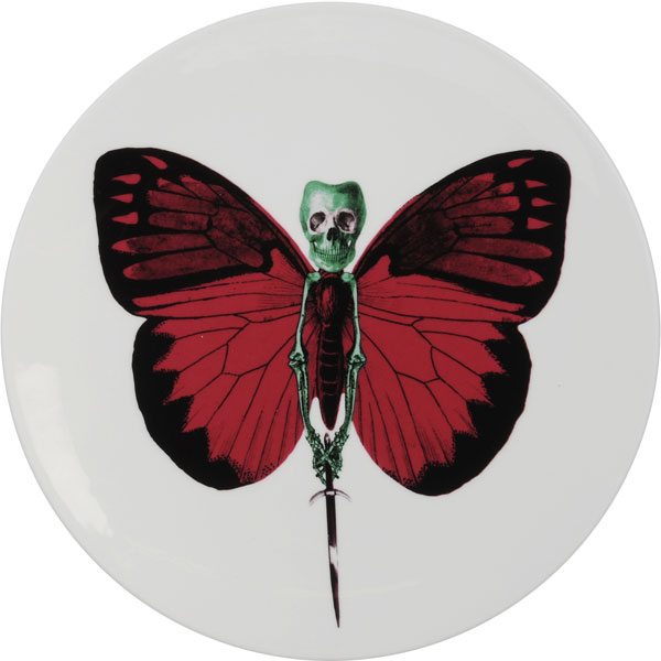Vix plate from the Lepidoptera Collection by New English
