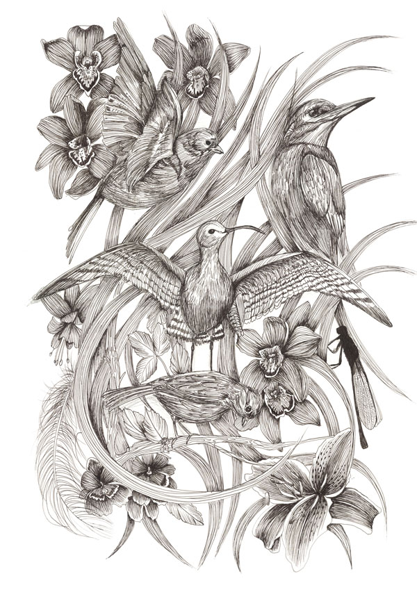 Sketch by Surface Pattern Designer Louise Tiler